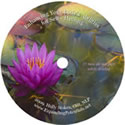 healing the body hypnosis cd